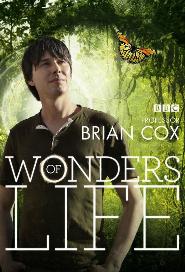Wonders of Life poster