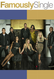 Famously Single poster