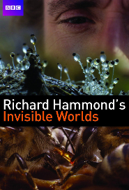 Richard Hammond's Invisible Worlds poster