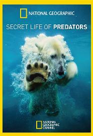 Secret Life of Predators poster
